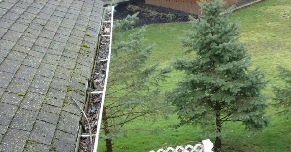 Overhead view of a gutter full of leaves and twigs