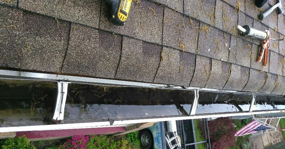Open gutter clogged with leaves and full of standing water