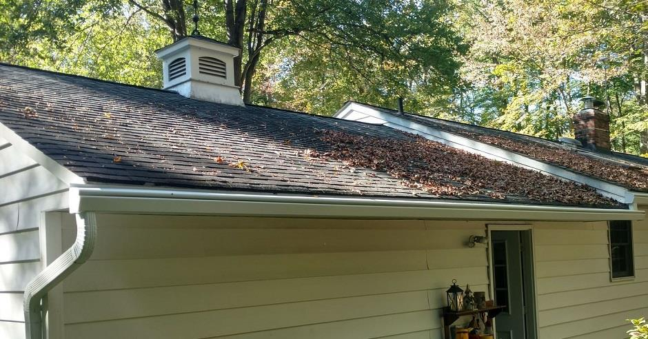 House with leaves on the roof, but not on the K-Guard leaf free gutters